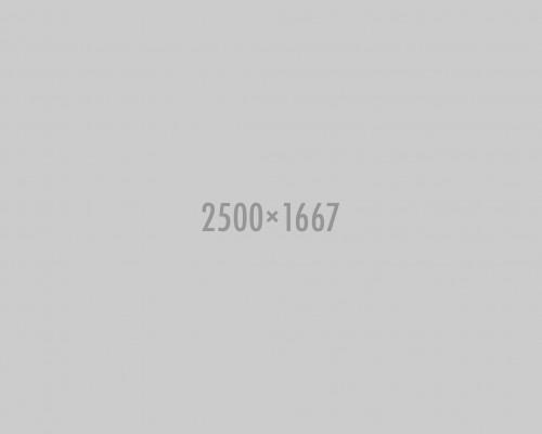 shutterstock_127783061