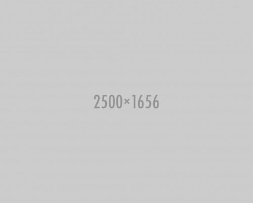 shutterstock_134014988