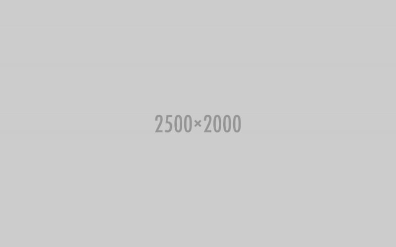 shutterstock_171167231