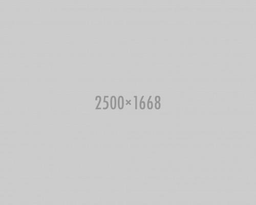 shutterstock_156054617